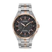 Citizen World Perpetual A-T Grey & Two-Tone Stainless Steel Men's Watch